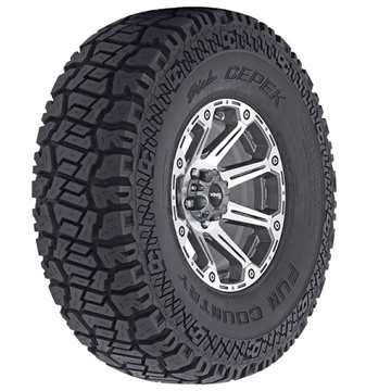 Llantas DICK CEPEK FUN COUNTRY 305/60 R18 Q